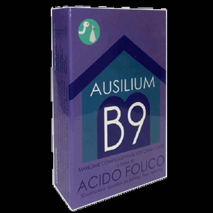 ausilium-b-9