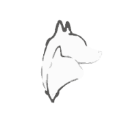 hunde-katzenohr